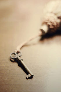 The Key...  von Trish Mistric