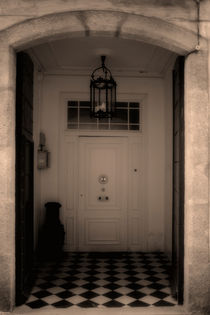 The door by Laura Benavides Lara