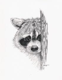 Peeking Raccoon by Brandy House