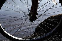 Bicycle Wheel  von Aidan Moran