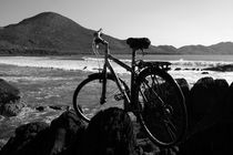 Bicycle At The Beech.  von Aidan Moran