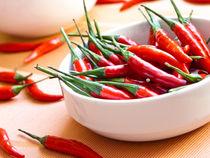 Chili (Capsicum annuum) - Chili pepper (Capsicum annuum) von botanikfoto