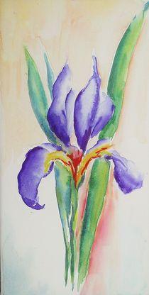 Iris von Theodor Fischer