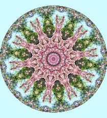 Kaleidoskop von Ingrid Eichhorst