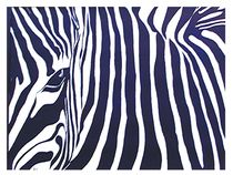 Zebra by Theodor Fischer