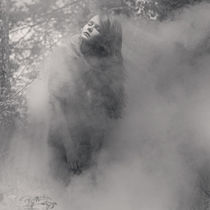 magic woods by Vladimir Serov