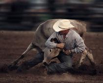 Rodeo 'Knight' by Howard Cheek