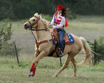 Rodeo Queen von Howard Cheek