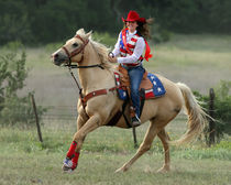Rodeo Queen by Howard Cheek