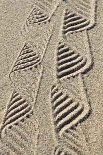 Strukturen im Sand (02) von Karina Baumgart