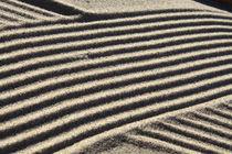 Strukturen im Sand von Karina Baumgart