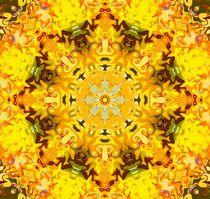Kaleidoskop I von Ingrid Eichhorst
