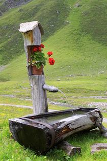 Brunnen auf einer Bergalm in Südtirol (02) von Karina Baumgart