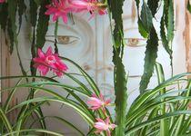 Buddha Maitreya III von Sieglinde Talke