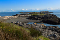 Trial Island and the Strait of Juan de Fuca from Beach Road von Louise Heusinkveld