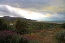 Landschaft im Sarek Nationalpark (01) von Karina Baumgart