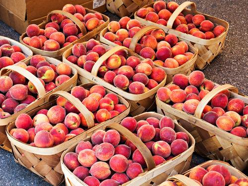 Peaches0350