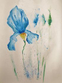 Iris by Theodor Fischer