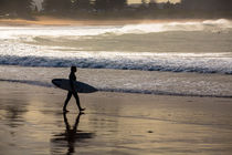 Surfer at Palm Beach by Sheila Smart
