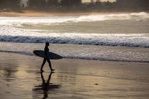 Surfer at Palm Beach von Sheila Smart