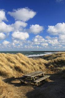 Ostseeküste in Dänemark 07 von Karina Baumgart