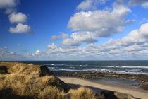 Ostseeküste in Dänemark 05 von Karina Baumgart