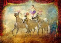 Cheval Danceur by Trudi Simmonds