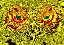 Hold the owls gaze von Leopold Brix