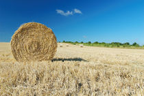 Hay Bale by aremak