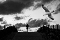 Birds 4 by Hans Levendig
