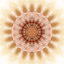 Mandala golden Ornaments von Christine Bässler