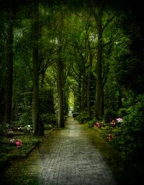 Auf dem Friedhof von Elke Balzen