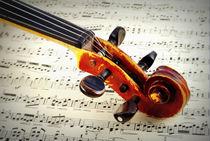 Violine by aremak