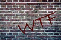 WTF by Hans Levendig