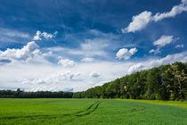 Grün und blau - frische sommerliche Landschaft von Matthias Hauser