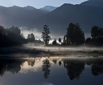 Misty morning at Lake Matheson, South Island, New Zealand by Sheila Smart
