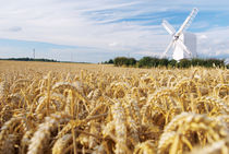 Old Windmill by aremak