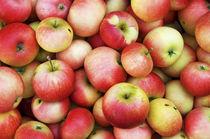 Organic Apples von aremak