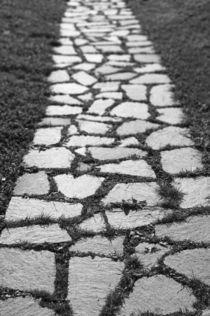 Stone Path by aremak