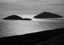 Deenish and Scariff Islands von Aidan Moran