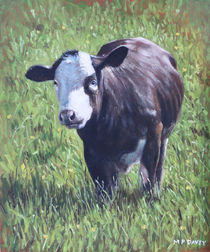 Cow in grass by Martin  Davey