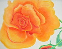 Orange Rose by Christine Chase Cooper