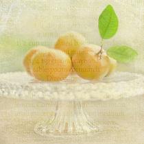 Organic Mandarins by Linde Townsend