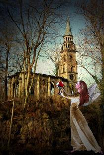 Die letzte Rose von Marie Luise Strohmenger