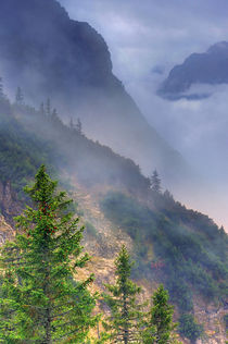 Licht und Nebelstimmung im bayrischen Hochgebirge, Light and fog atmosphere in the Bavarian alps by Sebastian Frölich