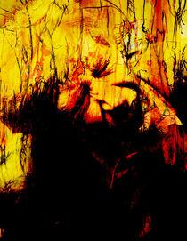 Feuertaufe (Pagan Vision) by Bernhard Kosten