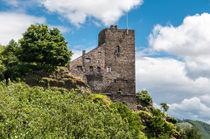 Burg Liebenstein 41 by Erhard Hess
