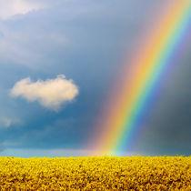 Regenbogen von Jake Playmo