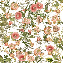 Pink Bloom Collage von vintage