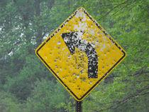 Rednecks, Guns, and Authority, Curve Ahead Sign #1. von Terry Kepner